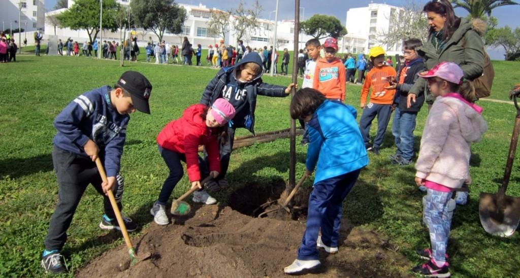 Dia Arvore_Parque da Cidade1
