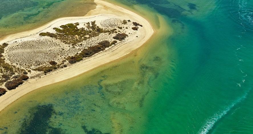 Algarve-Nomeado